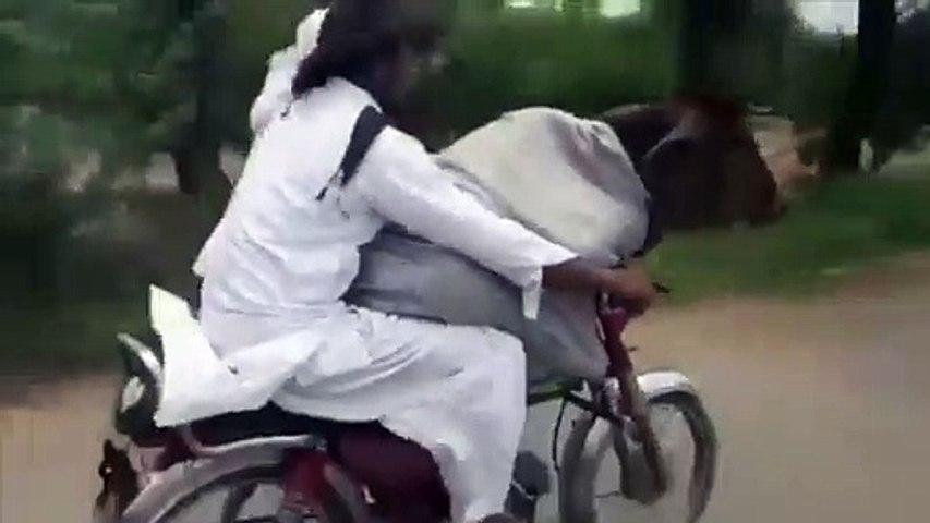 Una vaca motorizada: el sistema pakistaní que arrasa