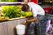 Comment gérer le changement d'eau d'un aquarium ?