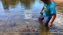 Un homme attrape un alligator à mains nues