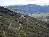 Douro 2019 : deux croisières et de la bonne humeur avec les Lecteurs voyageurs
