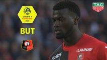But Mbaye NIANG (16ème) / Stade Rennais FC - LOSC - (3-1) - (SRFC-LOSC) / 2018-19