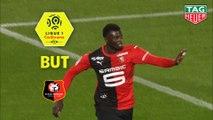 But Mbaye NIANG (71ème) / Stade Rennais FC - LOSC - (3-1) - (SRFC-LOSC) / 2018-19