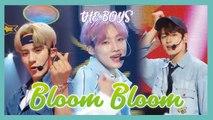 [HOT] THE BOYZ  - Bloom Bloom,  더보이즈 - Bloom Bloom  Show Music core 20190525