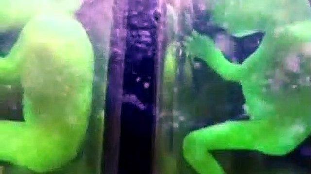 Ancient Aliens Season 11 Episode 10 The Prototypes