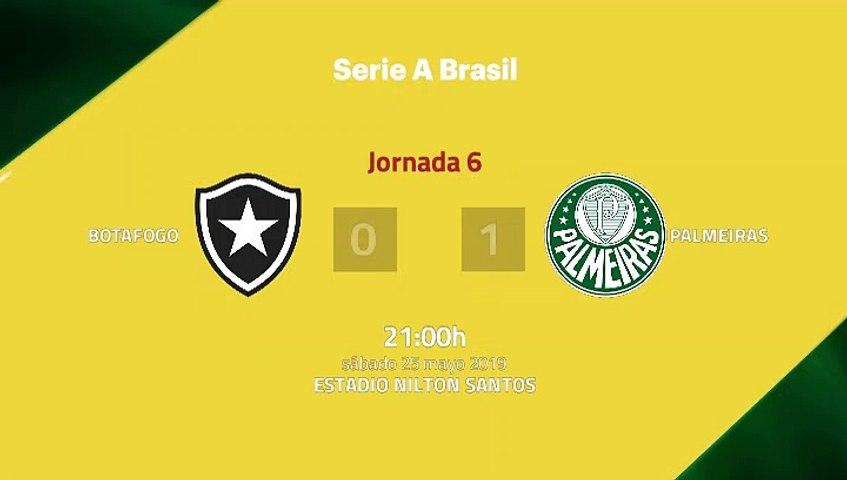 Resumen partido entre Botafogo y Palmeiras Jornada 6 Liga Brasileña