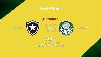 Previa partido entre Botafogo y Palmeiras Jornada 6 Liga Brasileña