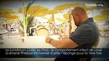 Cauchemar en cuisine : les pires restaurants visités par Philippe Etchebest sur M6