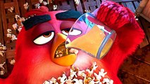 """ANGRY BIRDS 2 """"Let's Drink!"""" Clip (Animation, 2019)"""