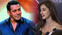 Bharat: Disha Patani feels she might not work with Salman Khan again; Here's why   FilmiBeat