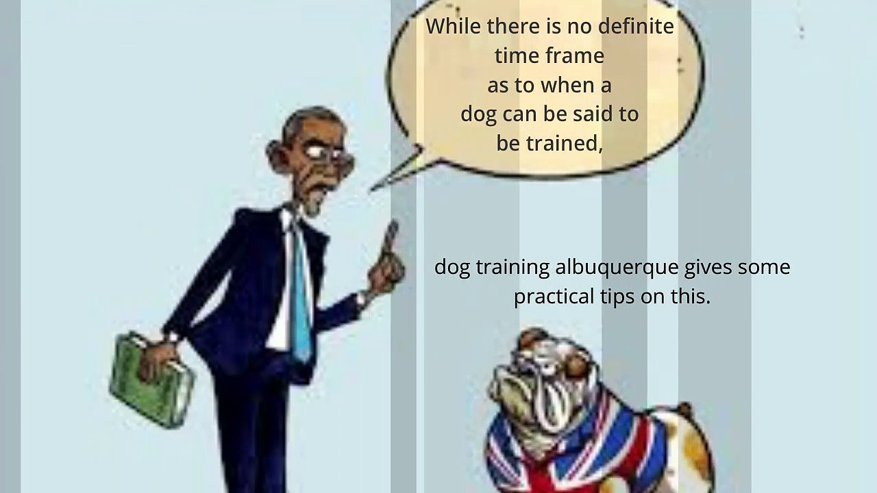 Dog Training Albuquerque