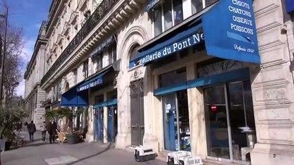 Inspection d'une animalerie parisienne