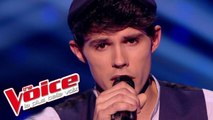 Bruce Springsteen – Dancing in the Dark | Lilian Renaud | The Voice France 2015 | Épreuve ultime