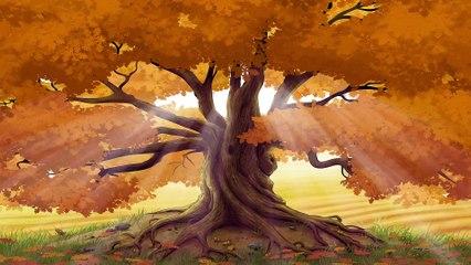 Celtic Music - Whispering Oak Woods   1 Hour - 4K, Beautiful Instrumental Music