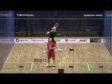 Squash : Case Swedish Open 2013 Quarter Final Roundup Part1