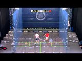 Squash : Allam British Open 2013 - Rd1 Roundup part 3