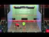 Squash: AJ Bell British Squash Grand Prix 2014 Quarter-Final Round Up (Pt 2)