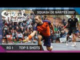 Squash: Top 5 Shots of the Day - Open International de Squash de Nantes 2017 Rd 1