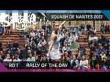 Squash: Rally of the Day - Open International de Squash de Nantes 2017 Rd 1