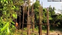 Bushman Build The Most Beautiful Unique Style House Inside Deep Jungle