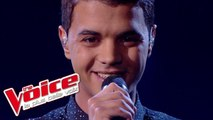 Louane – Je vole | Yann'Sine Jebli | The Voice France 2015 | Prime 1