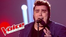 Mylène Farmer – Désenchantée | Yoann Launay | The Voice France 2015 | Prime 1