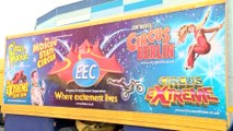 Circus Extreme Is In Town!