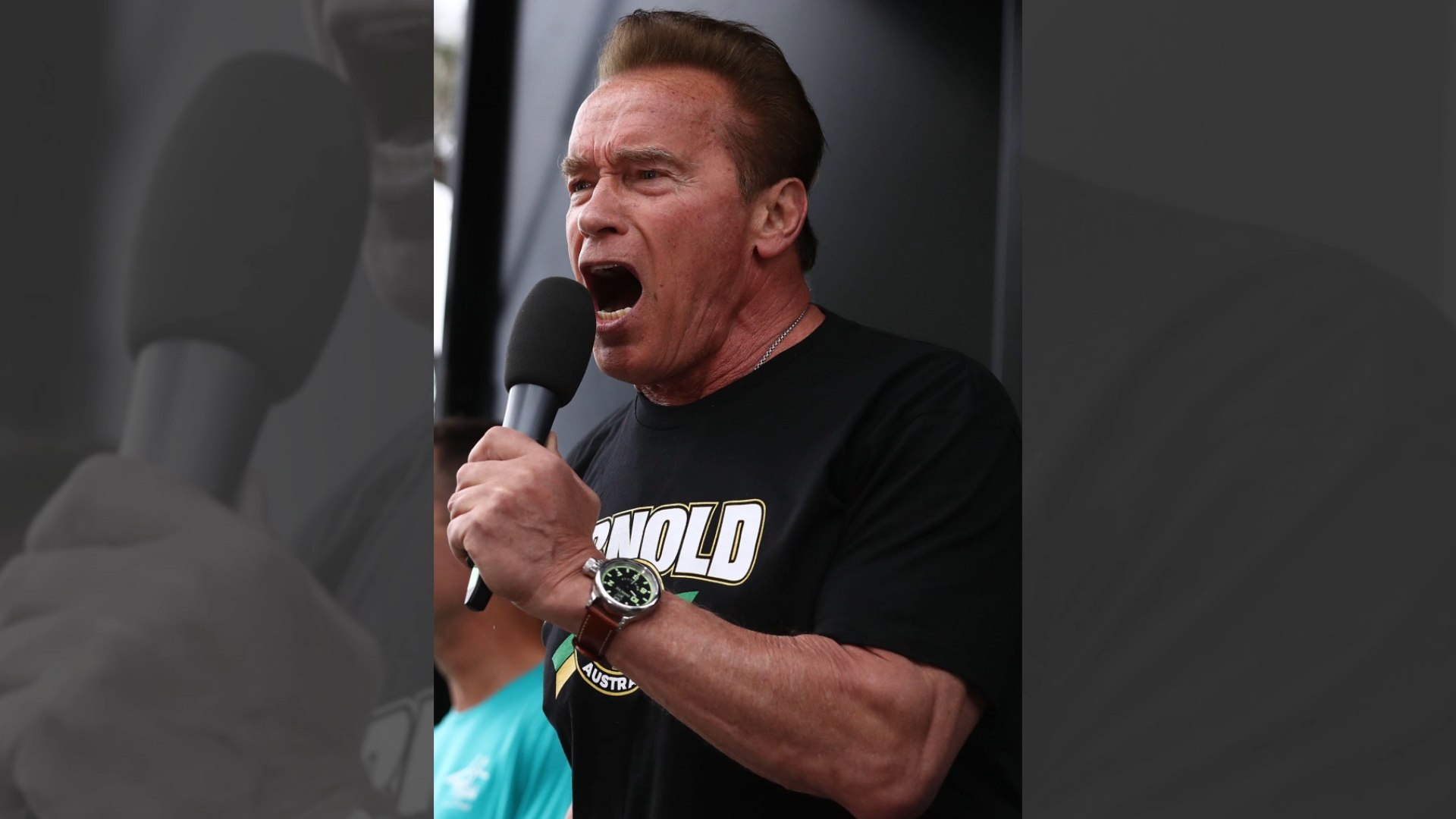 Arnold Schwarzenegger Celebrates Career With Rap Track