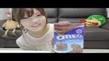 chocolate oreos from Hong Kong 香港国際空港で見つけたチョコがけオレオ♡