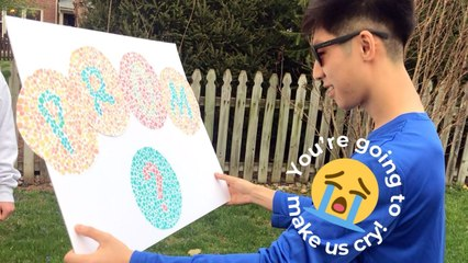 Surprise Promposal Using Color Blind Glasses