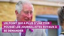 """Le prince Charles n'est pas """"si stupide"""" et sait que lorsqu'il sera roi il devra mettre de côté ses idées politiques"""