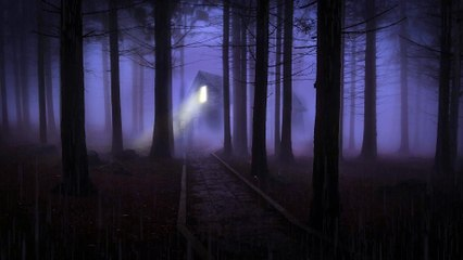 Thunderstorm & Rain Foggy Night Forest   10 HOURS - 4K, Insomnia, Meditation, Relaxing, Study, Night Rain & Thunder for Sleep