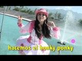 Honky Ponky