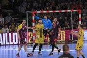 Nantes-Tremblay, le résumé   J25 Lidl Starligue 18-19