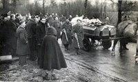 Le 6 juin 1944, le maquis de Corcieux dans les Vosges se soulève