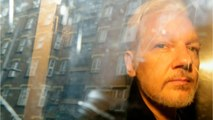 U.N. Rights Expert Says WikiLeaks' Assange Suffering From 'Psychological Torture'