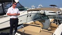 2019 Sea Ray SPX 210 Outboard Boat For Sale at MarineMax Wrightsville Beach, NC
