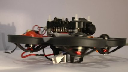 Computationally Efficient Autonomous Racing of a 72-gram Drone