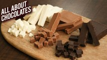 Everything You've Ever Wanted To Know About Chocolate Ep-1 - Facts About Chocolate - Bhumika