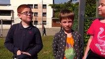 France: Sheep enrolled in elementary school | Focus on Europe