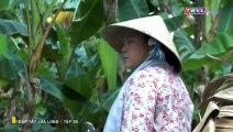 Dập Tắt Lửa Lòng Tập 36 - Ngày 1/6/2019 - dập tắt lửa lòng tập 37 - Phim Việt Nam THVL1 - Phim Dap Tat Lua Long Tap 36