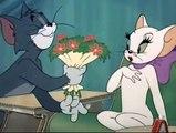 Casanova Cat - Tom and Zerry