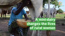 Burkina Faso: A mini-dairy changes the lives of rural women