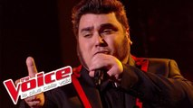 Francis Cabrel – La Corrida | Yoann Launay | The Voice France 2015 | Prime 2