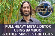 DETOXING HEAVY METALS WITH BAMBOO AND OTHER SIMPLE STRATEGIES