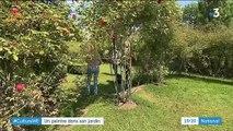 Oise : conçu par un peintre, un jardin remarquable classé au Guide Vert Michelin
