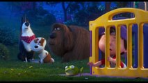 The Secret Life of Pets 2 Film Clip - Parenting Advice