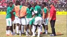 Football   Can 2019 : Présentation des néophytes