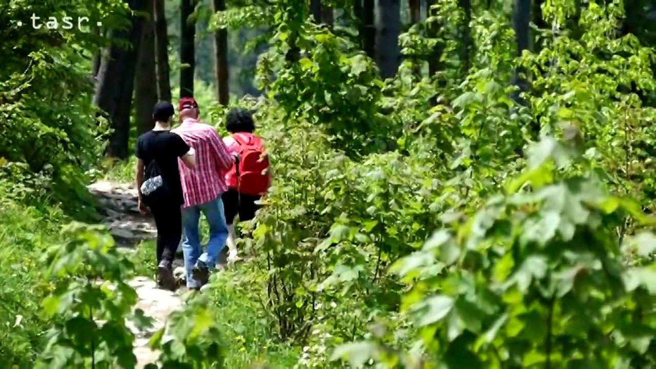 VRÁTNA DOLINA: Prechádzka na Chatu na Grúni