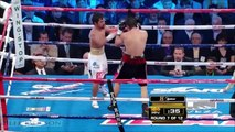 Manny Pacquiao vs Antonio Margarito - Highlights (Pacquiao DOMINATES MARGARITO)