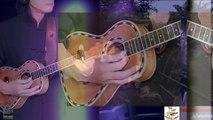 SHE_cover[Chris Wilson][Ukulélé-version][Jazzy sound]
